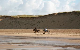 Riding, riding stables at Sables d'Olonne in Vendée